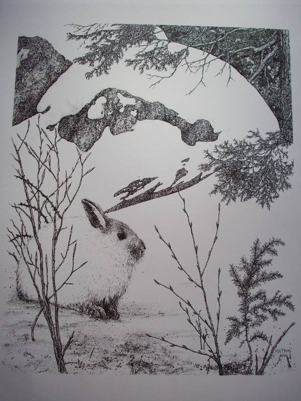 Rabbit Pen & Ink Print