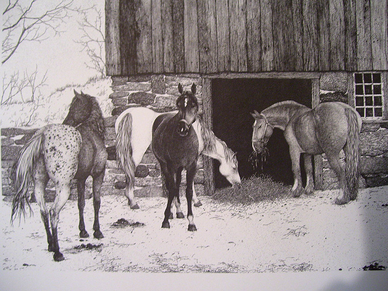 Four Horses Pen & Ink Print