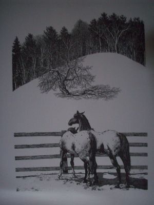 Appaloosa Pen & Ink Print