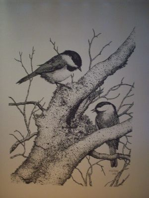 Chicadee Pen & Ink Print