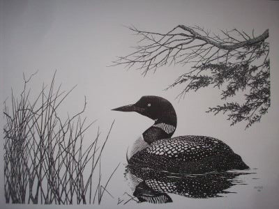 Loon Pen & Ink Print