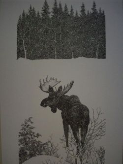 Moose Pen & Ink Print