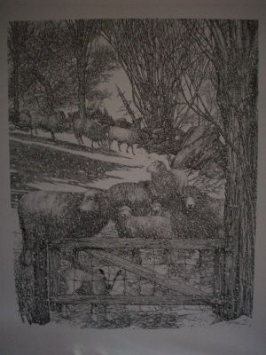 Sheep and Gate Pen & Ink Print